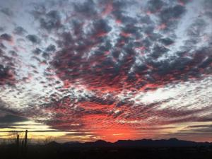 Feb 4th Sunset (Fred Littooy)